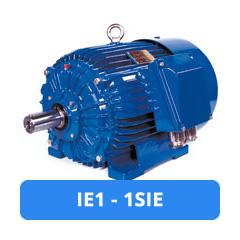 Moteur électrique IE1 1SIE JET-France